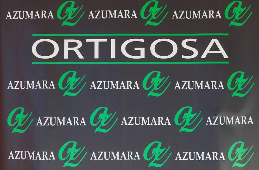 2015-08-19 09_11_01-Azumara Baños Decoración