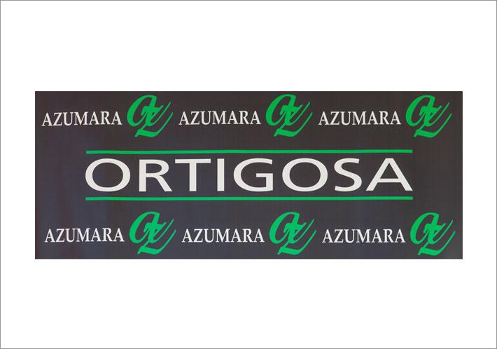 azumara-ortigosa-web